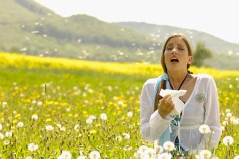 pollen-helps-allergies-phot