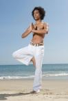 Yoga Boy 1, purchased