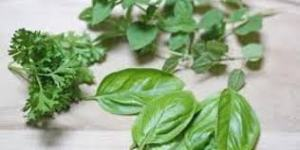 detox pic herbs