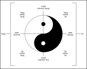 yin cortisol axis
